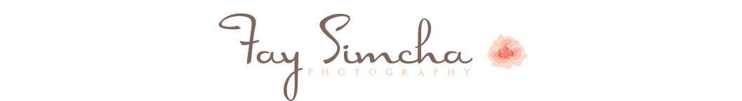 Brooklyn Newborn Photographer | Fay Simcha Photography logo